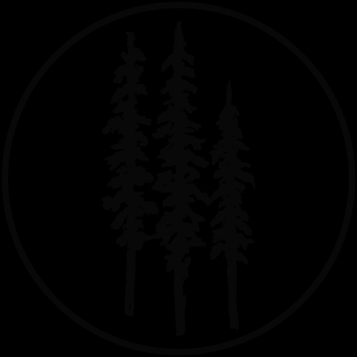 Sierra Forests