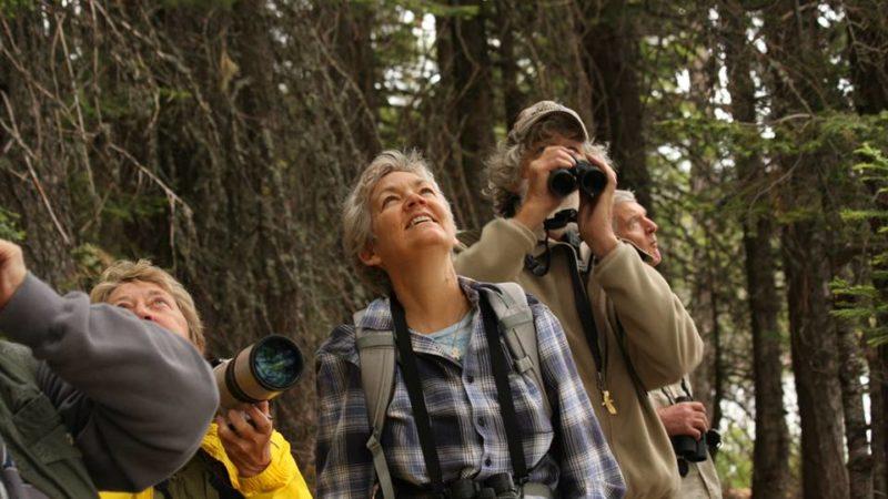 Birding at Goat Mtn, Berryessa-Snow Mtn NM by Sami LaRocca