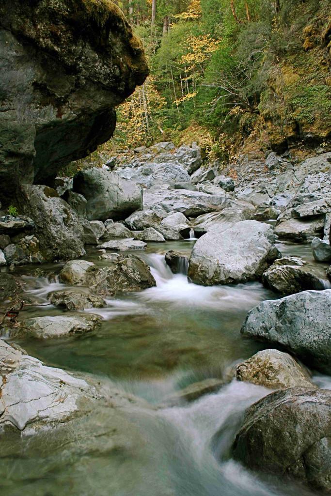 Blue Creek Hike