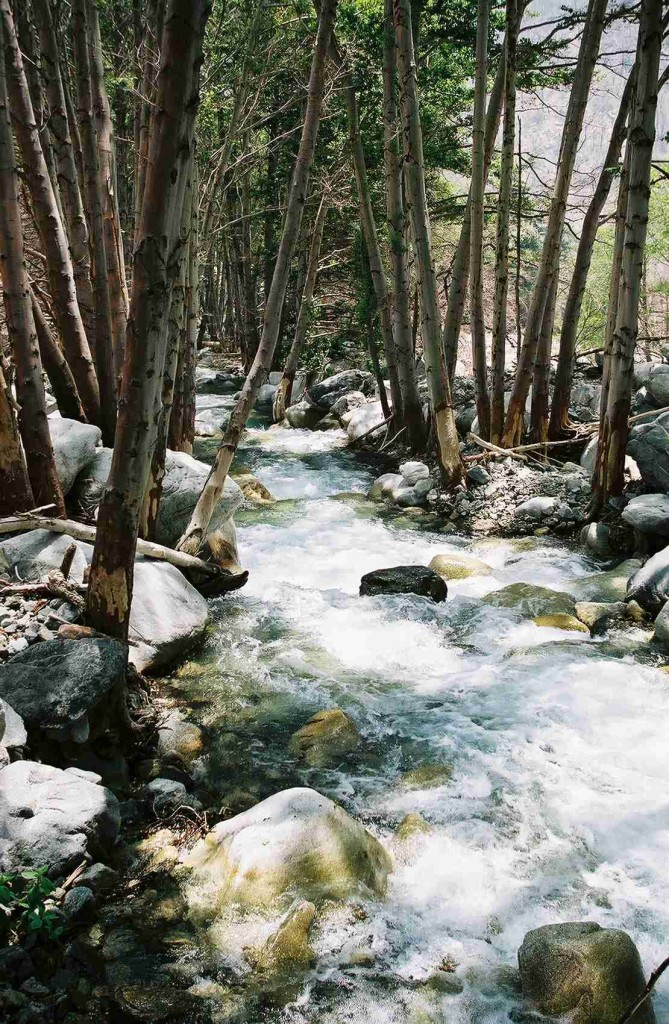 Middle_Fork_Lytle_Creek_2_Reduced