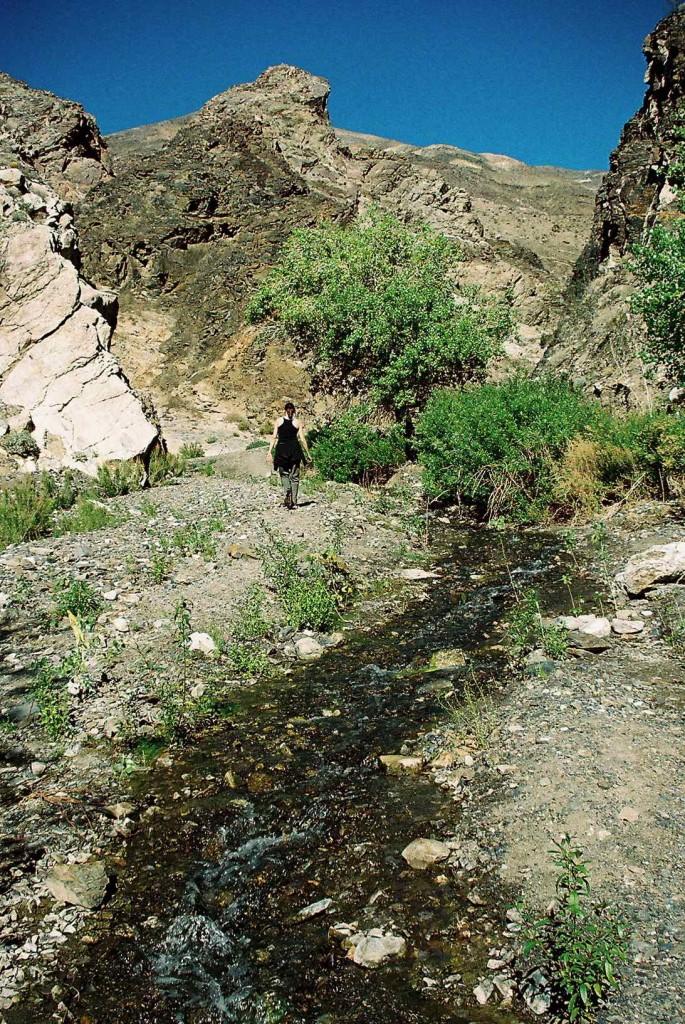 Surprise_Canyon_hiker