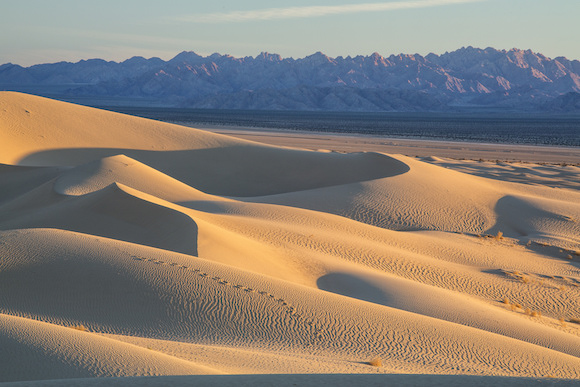 mojave_trails_national_monument-white_house