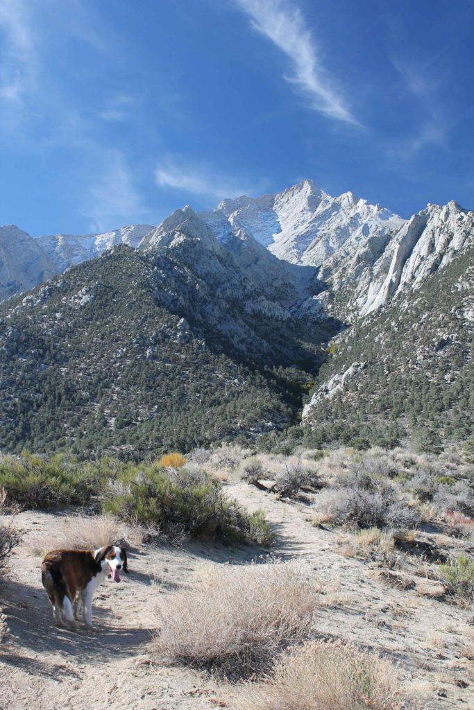 top trails sacramento evans steve