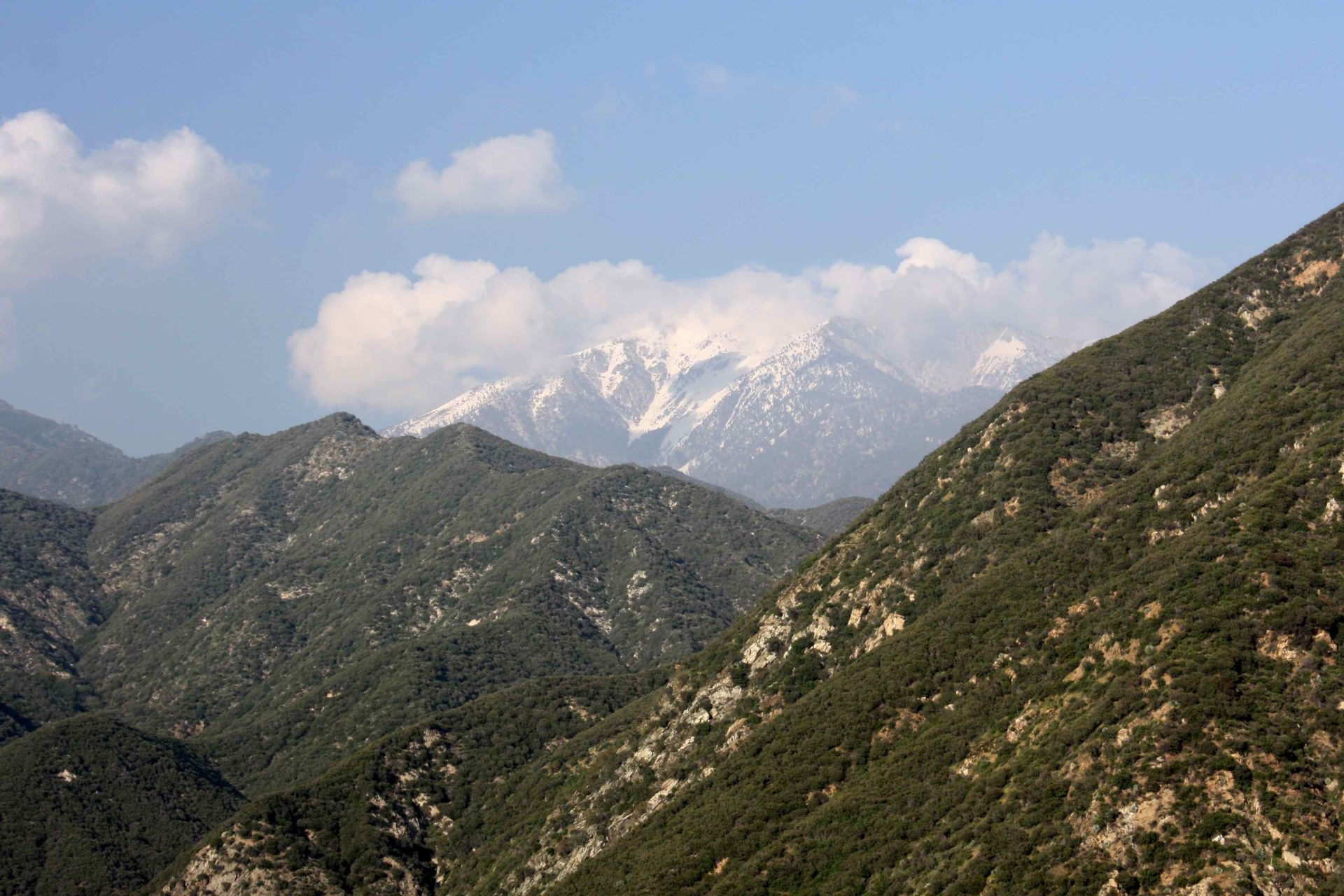 Sheep Mountain Wilderness Additions, San Gabriel Mountains. Photo by Steve Evans.
