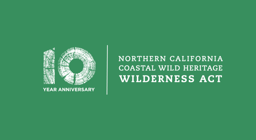 10th-anniv-logo-with-green-background