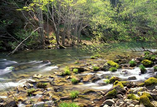 Upper SF Eel Basin Rivers