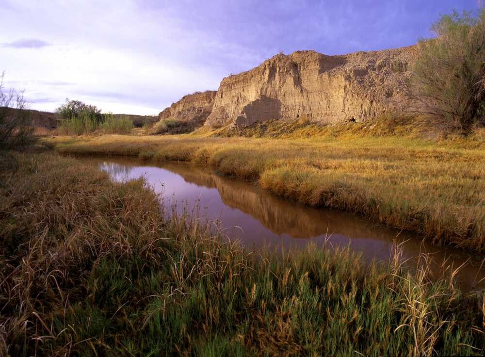 Amargosa River by John Dittli