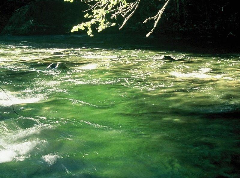 California Wild Rivers Project