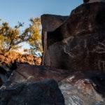 Petroglyph Rodman Wilderness BLM