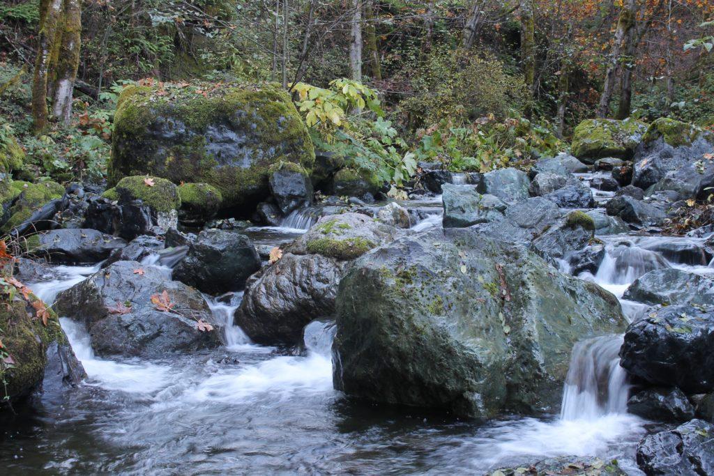 Madden Creek.