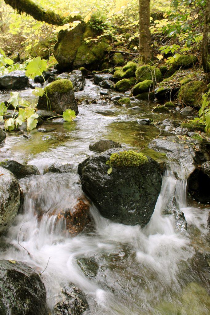 Butter Creek.