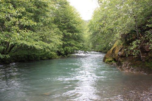 Honeydew Creek.