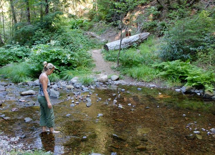 SF Bear Creek.