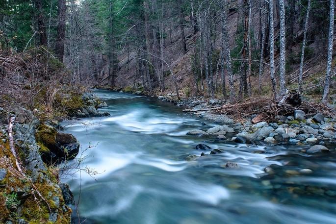 NF Trinity River.